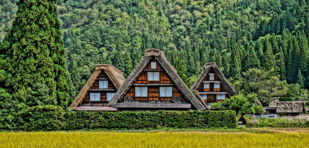 Découverte du Japon traditionnel à Gifu