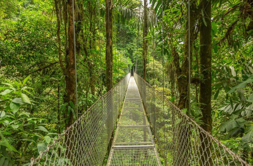Monteverde au Costa Rica