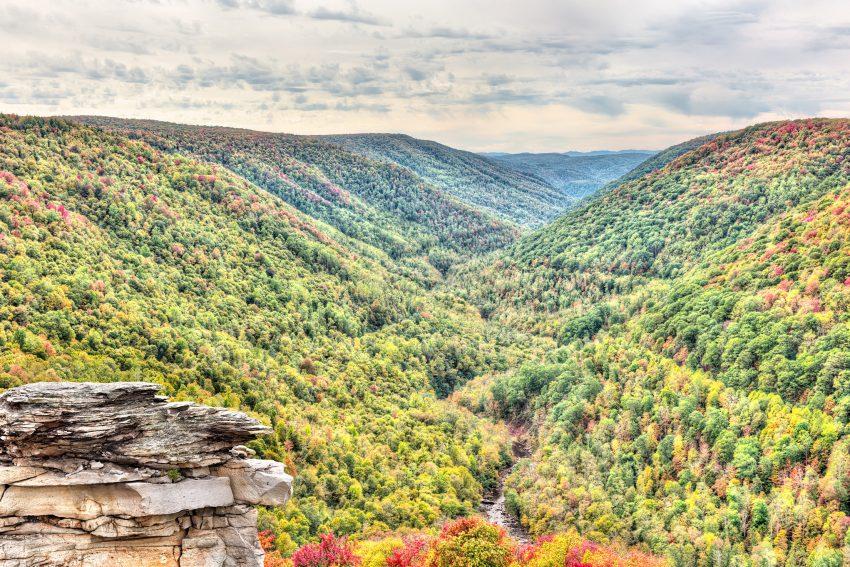 Rivière Blackwater et les montagnes Allegheny en automne