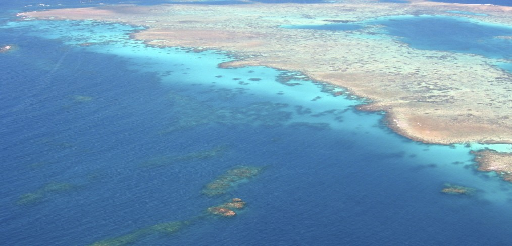 Vue aérienne de la grande barrière de corail en Australie