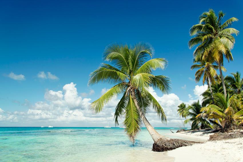 Les Seychelles - plage paradisiaque