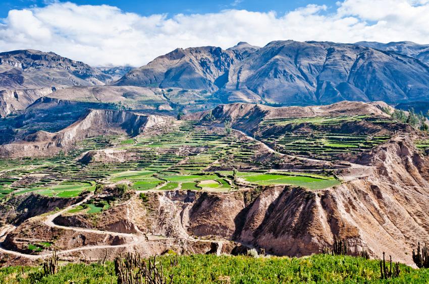 Canyon de Colca au Pérou