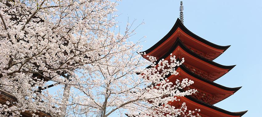 crédit photo Préfecture d'Hiroshima